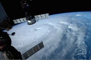 taifu8gou